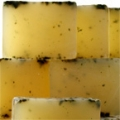 Aromatherapy Soap - Hebridean Seaweed